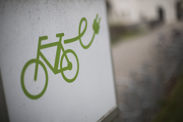 Bicicleta para cargas pesadas E-Cargo PRO wt$