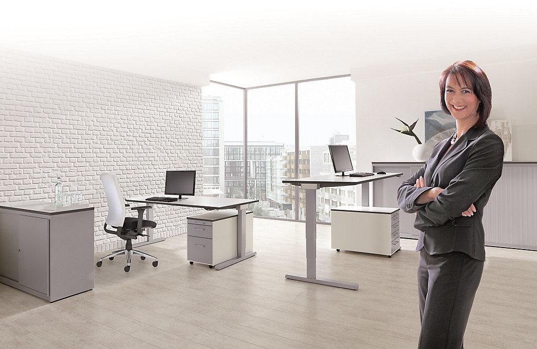 Gospa v pisarni s pohištvom mauser