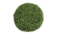 Spherical ligustrum